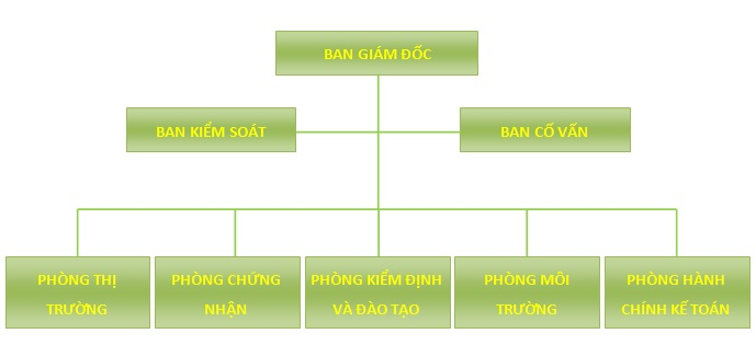sơ đồ tổ chức vietnam cert