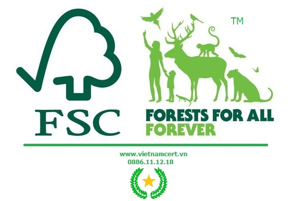 Logo của tổ chức chứng nhận FSC